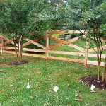 Cedar Split Rail Fence Gate