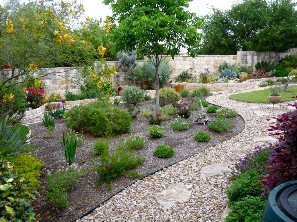 Backyard Drought Tolerant Landscape