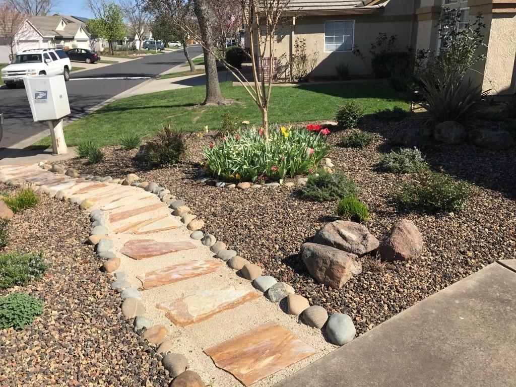 Drought tolerant landscape front yard madison art center - Drought tolerant landscape design ...