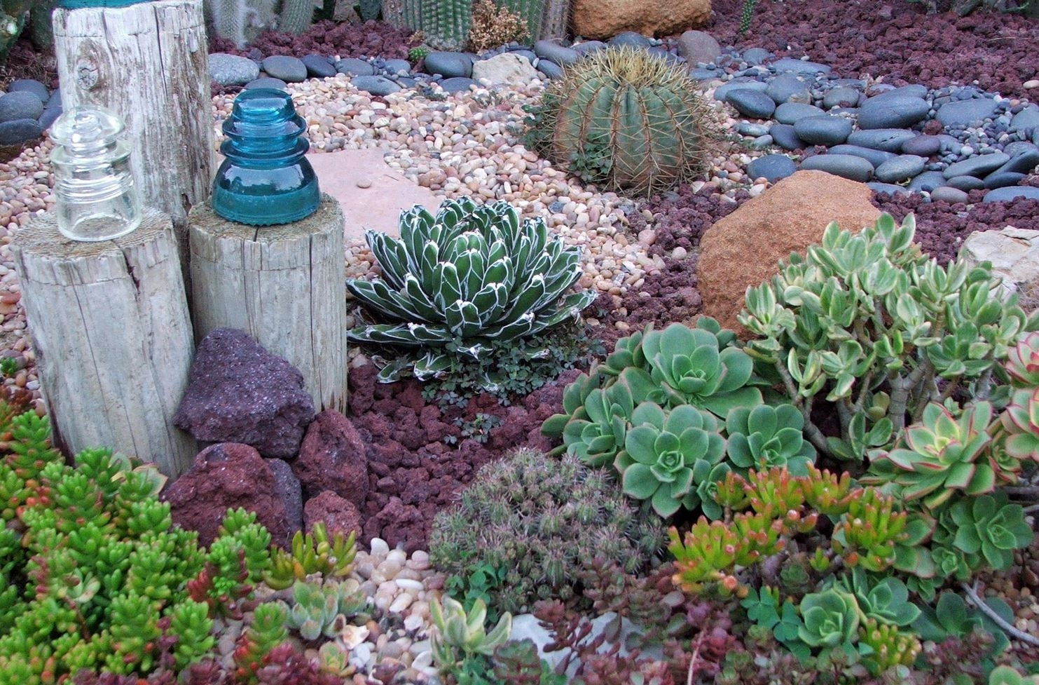 Drought Tolerant Landscape Ideas