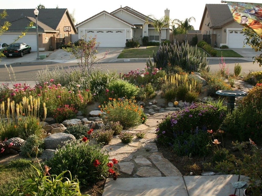 Good Drought Tolerant Landscape