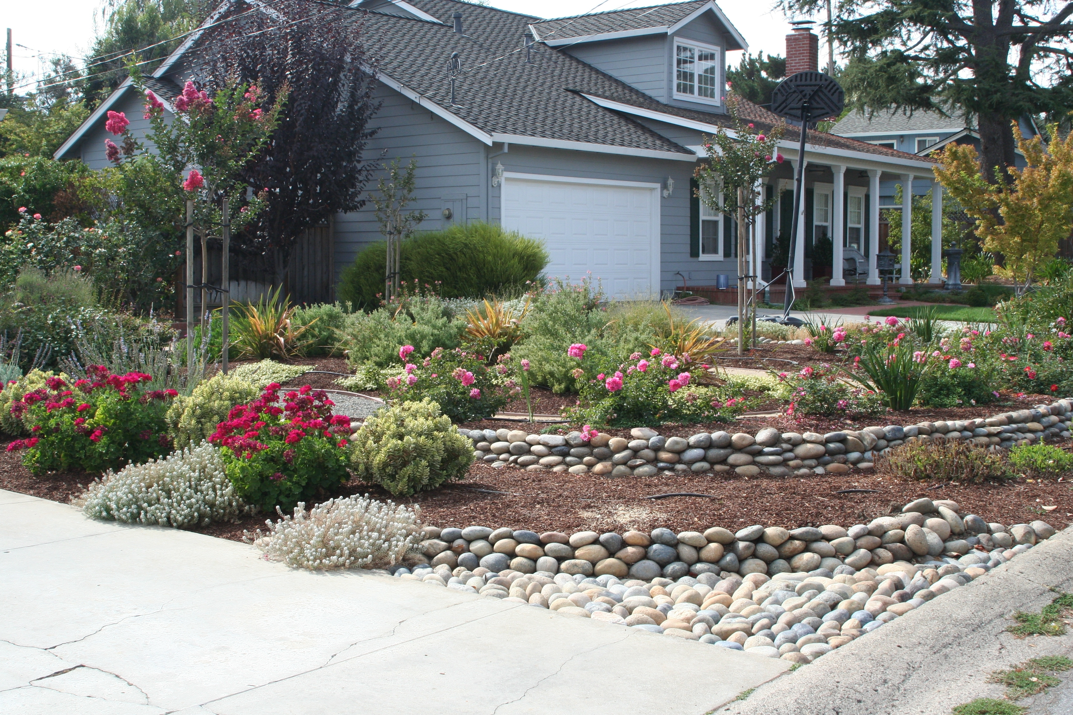 Low Maintenance Drought Tolerant Landscape
