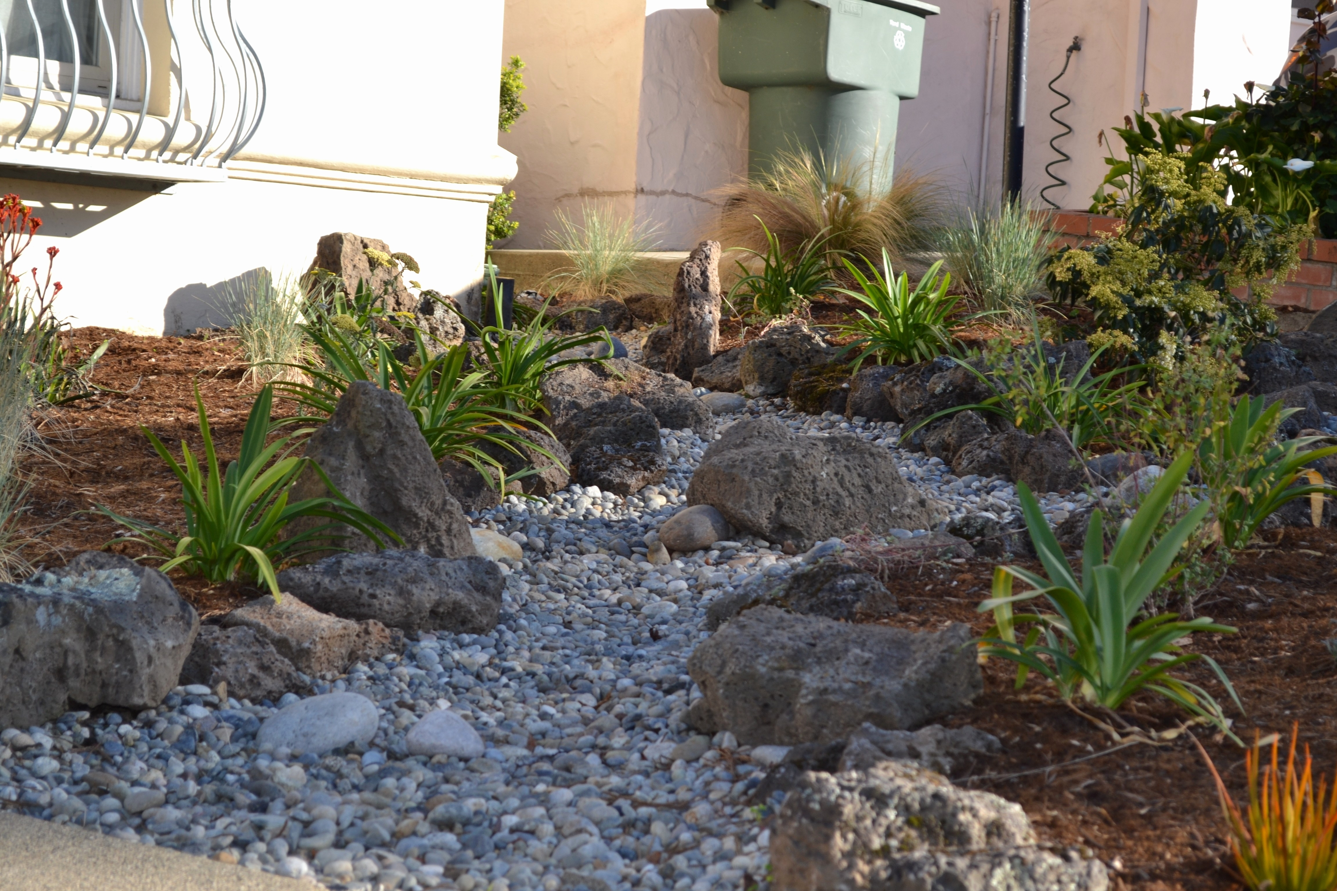 Luxury Drought Tolerant Landscape
