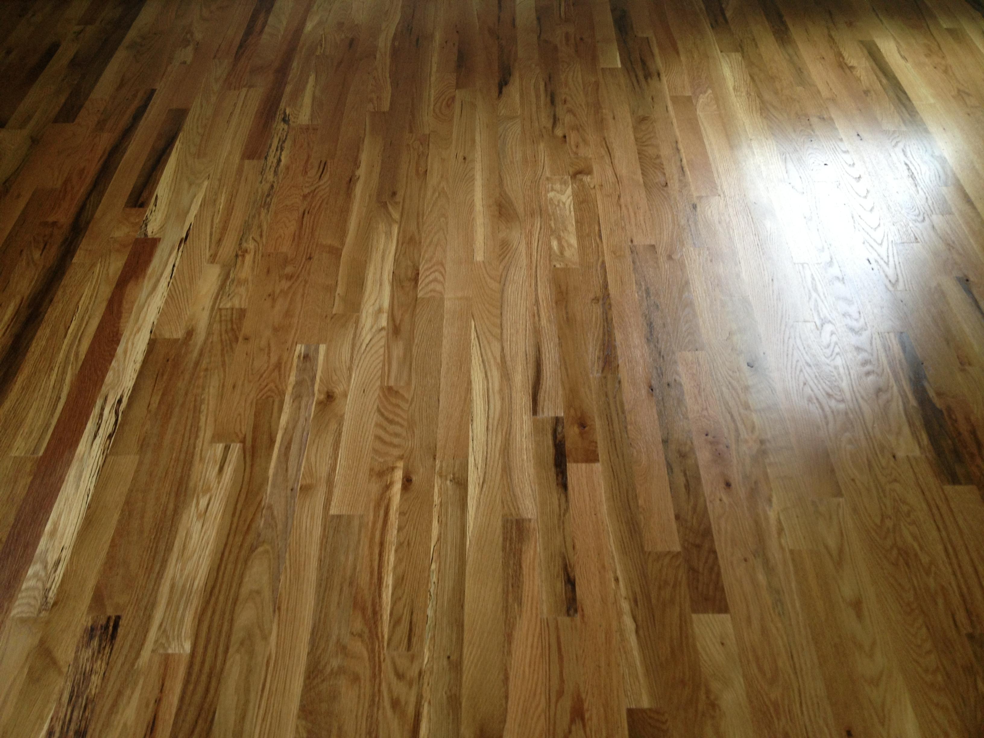 Semi Gloss Vs Satin Hardwood Floors Madison Art Center
