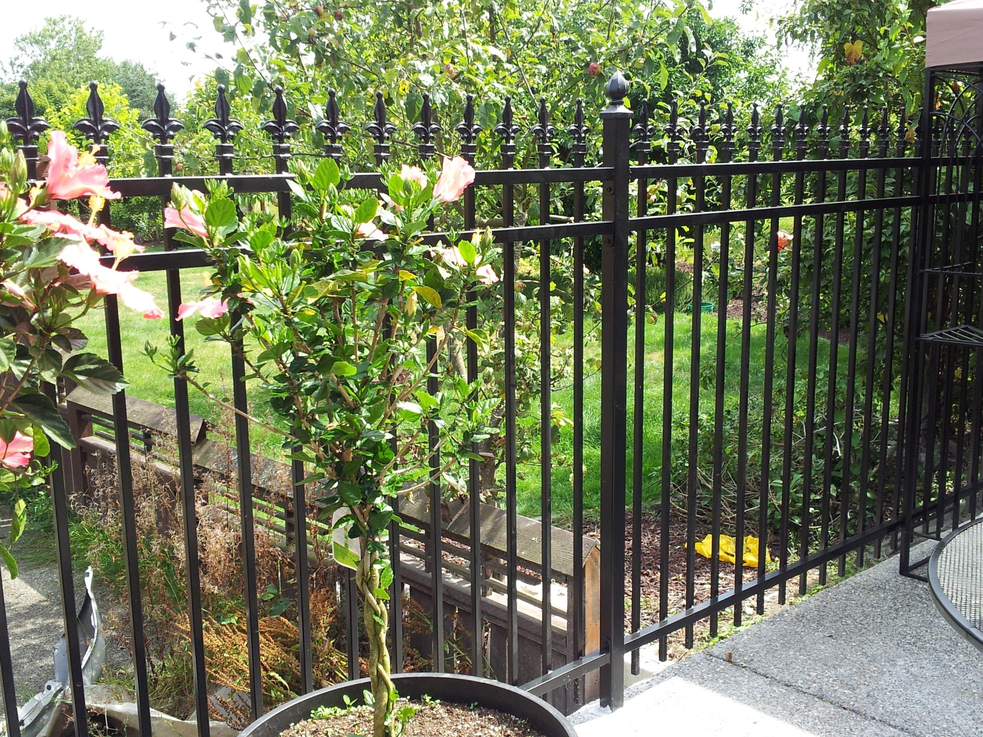 Wrought Iron Fence Alternative